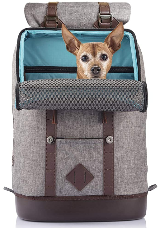 Kurgo Dog Backpack for Small Pets