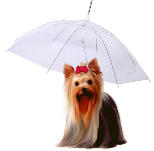 Perfect Life Ideas Pet Umbrella