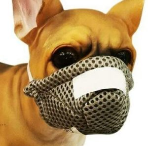 Besay Nylon Face Mouth Mask Anti Dust Pollution Breathable Mask for Pet