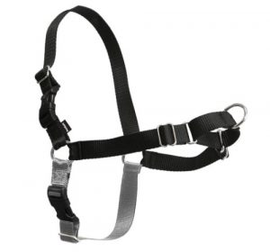 PetSafe Easy Walk Dog Harness, No Pull Dog Harness