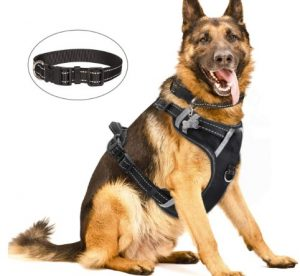 WINSEE Dog Harness No Pull, Pet Harnesses with Dog Collar