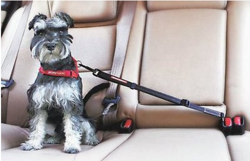 EzyDog Click Adjustable Seat Belt Restraint
