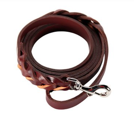 Logical Leather Braided Dog Leash