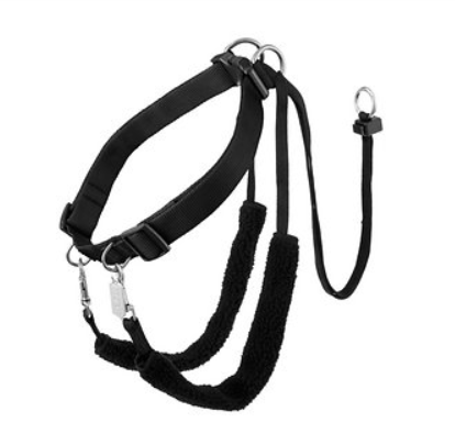 Sporn Training Halter Nylon