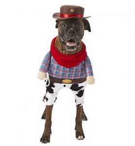 walking cowboy dog costume