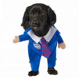walking pawlitician dog costume